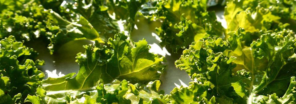The SuperHero of Vegetables – Crunchy Kale Chips