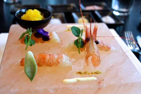 Amarni-aqua-shrimp-salt