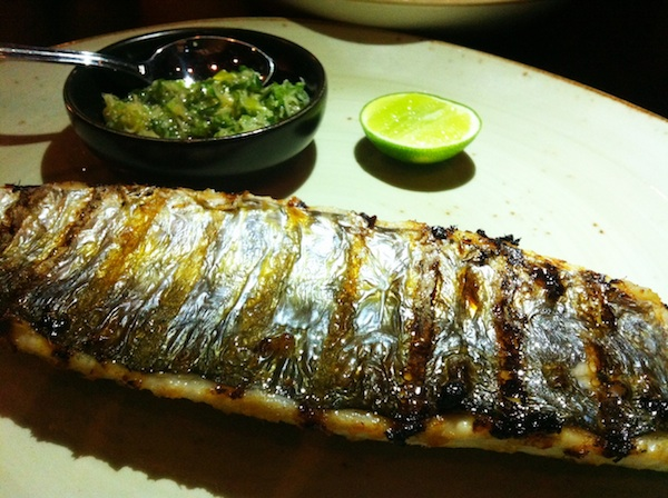 holeefook mackerel